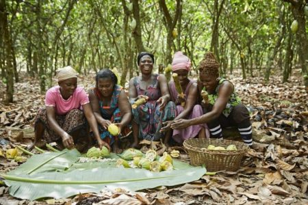 Mars Wrigley joins with major confectionery brands in progressing CFI cocoa initiative